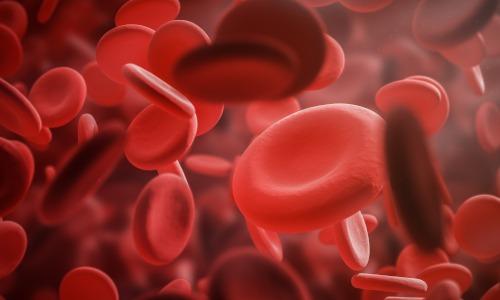 Rote Blutplättchen als Symbol für Blutwerte