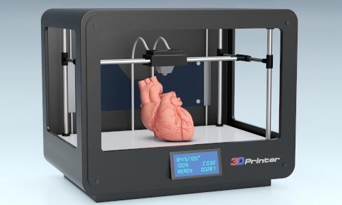 Bioprinting Organ