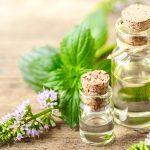 Pfefferminze – frischer Helfer für die Gesundheit