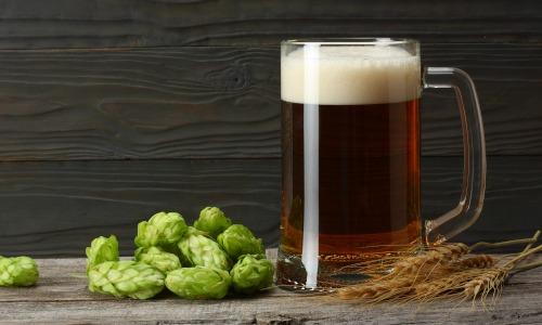 Bierglas, Gerste und Hopfen stehen auf einem Holztisch