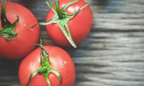 Drei Tomaten liegen auf einer Holzplatte