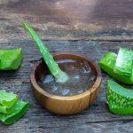 Aloe vera – Wüstenpflanze für Gesundheit und Schönheit