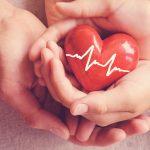 Organspende – Was Sie alles wissen sollten