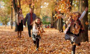 Der Herbst ist da: Darauf können wir uns freuen!
