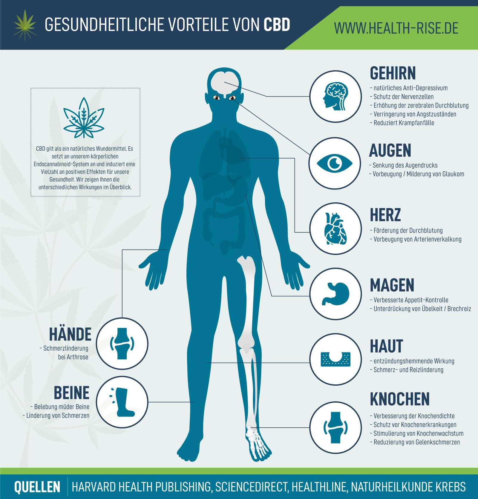 Infografik CBD Wirkungen und Vorteile Health Rise GmbH