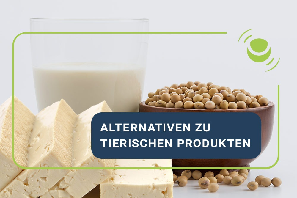 Alternativen zu tierischen Produkten