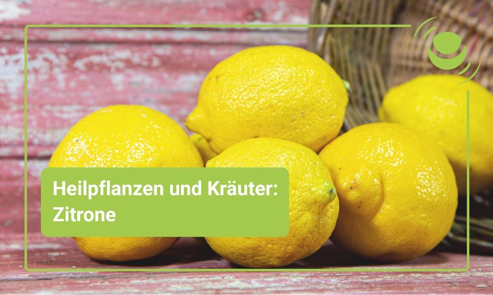 Zitrone – Alles, was du über ihre Wirkung wissen solltest.