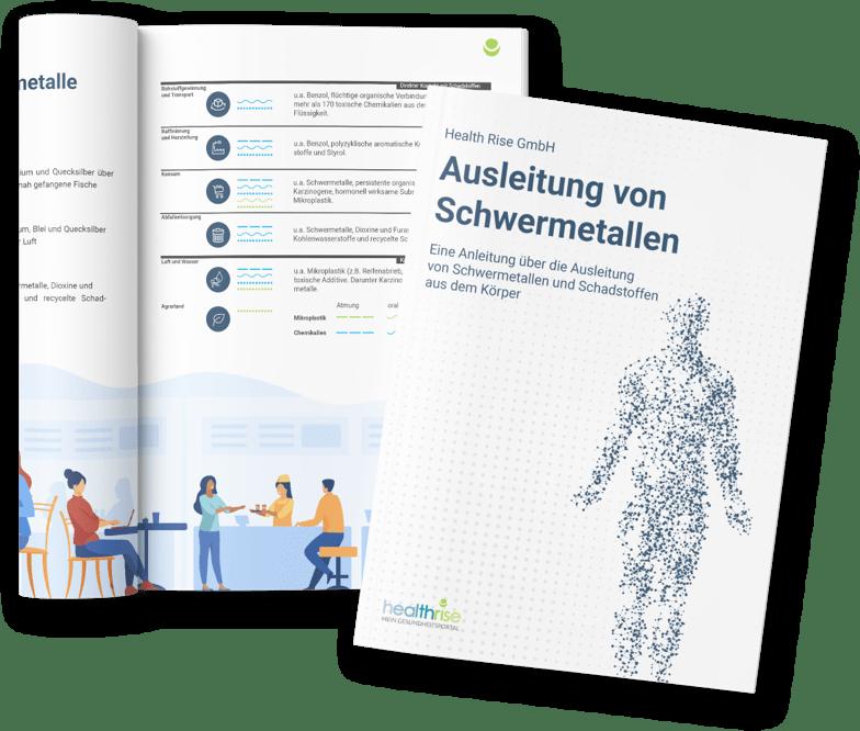 e-book Schwermetalle
