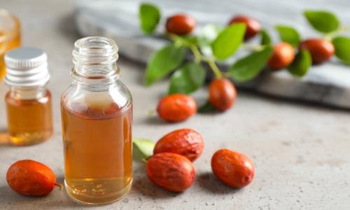 Jojoba Öl – hochwertige Bio-Pflege für Haut undHaar