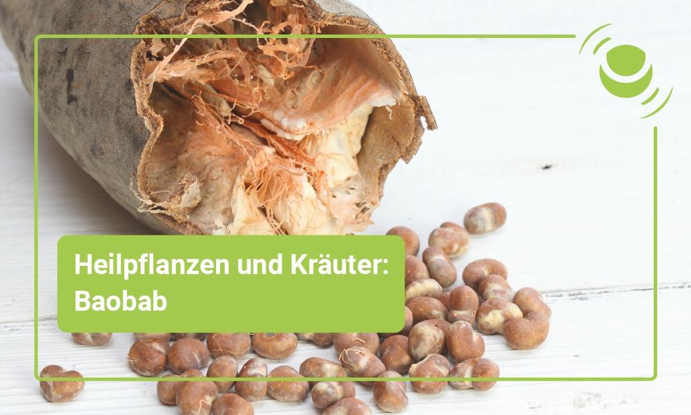 Baobad Heilpflanze