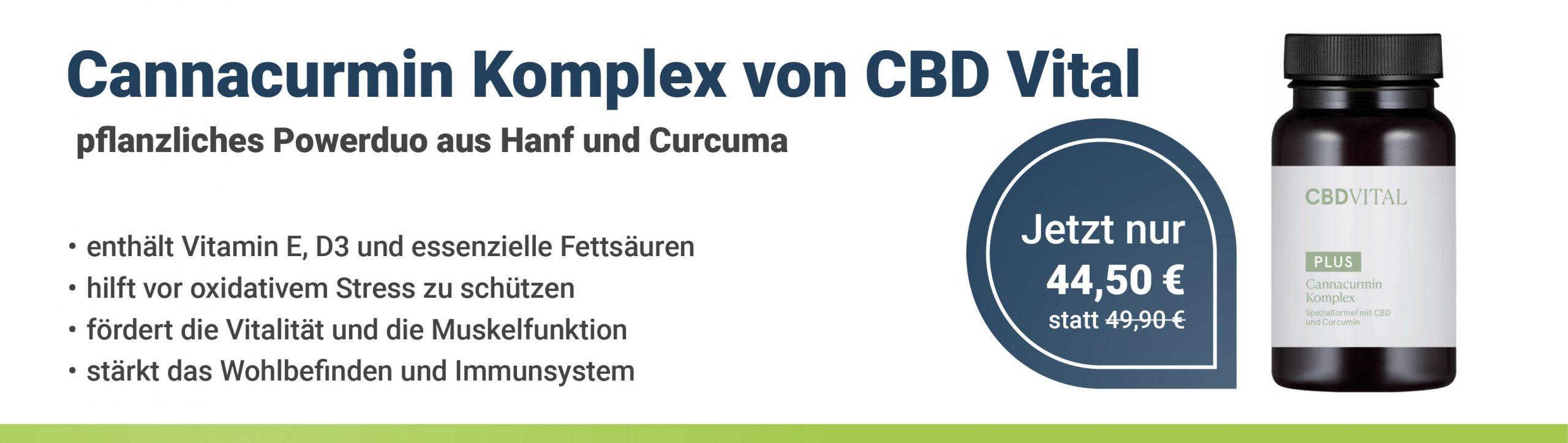 https://www.health-rise.de/wp-content/uploads/2021/09/Cannacurmin_mobil.jpg